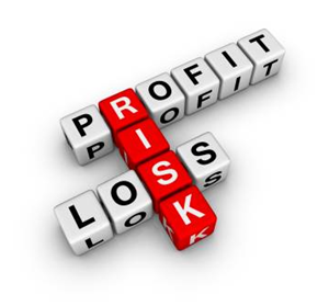 Finance: profit risk and loss