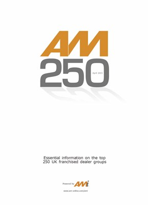 AM250 Report - printed and digital copy