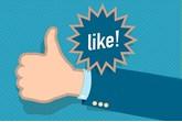 Independent dealer facebook like